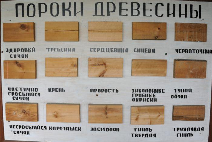 Фото пороков древесины для определения сорта древесины по DIN 68126
