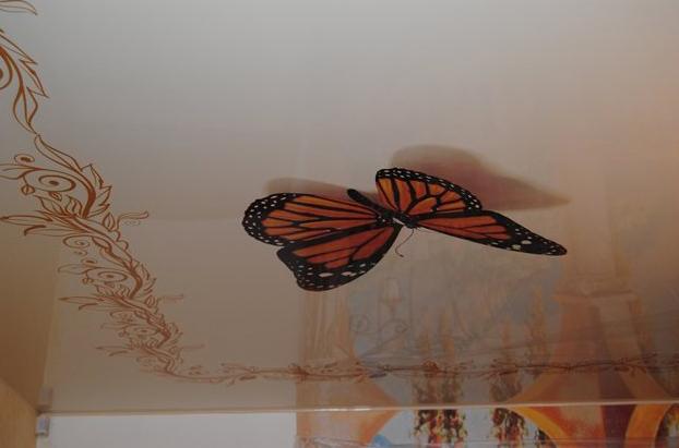 Натяжной потолок с красивой бабочкой