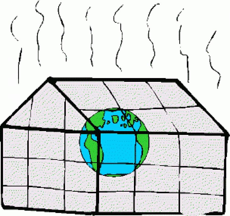 ПВХ пленка создает в помещении парниковый эффект?