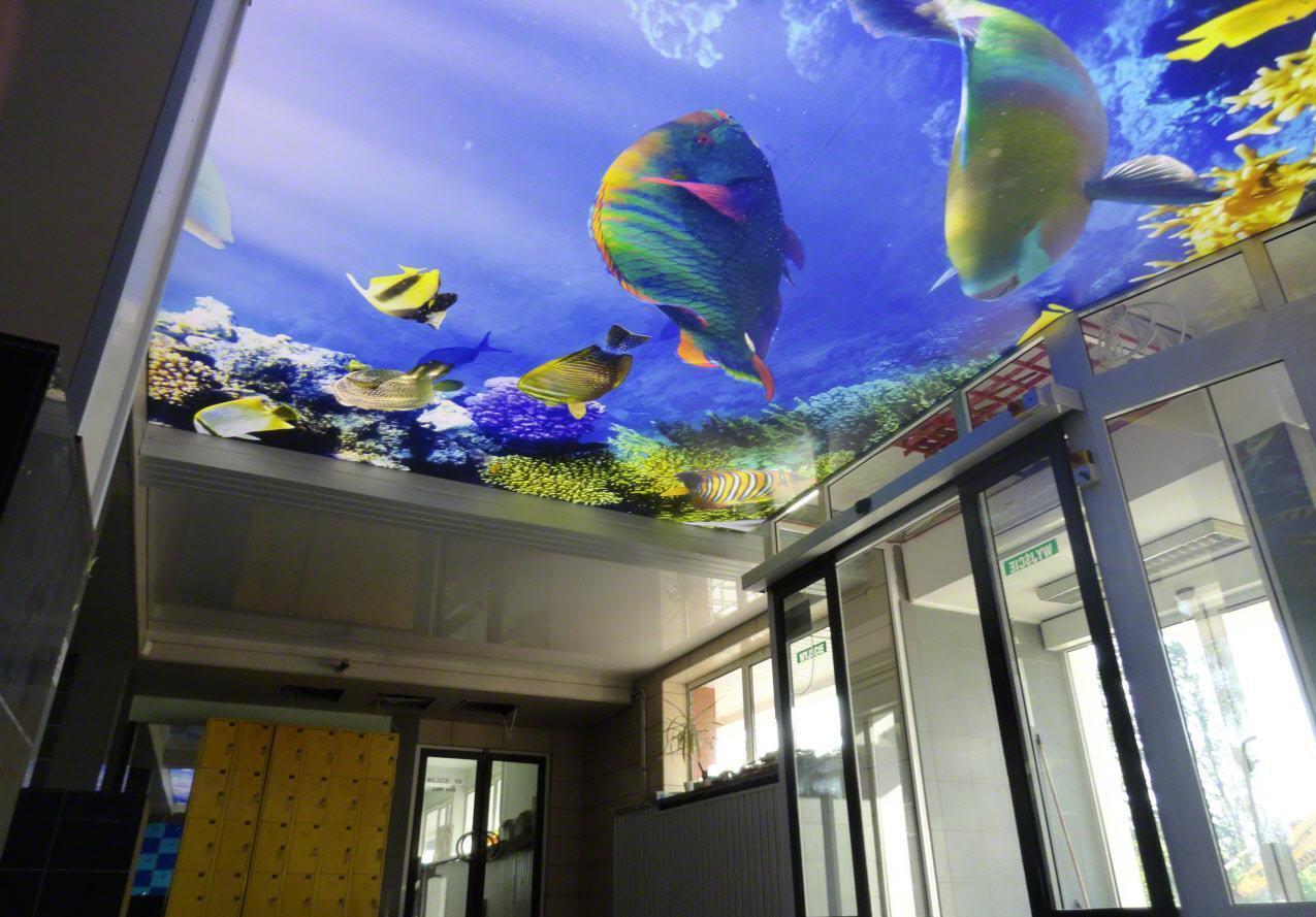 Натяжной потолок с рыбками