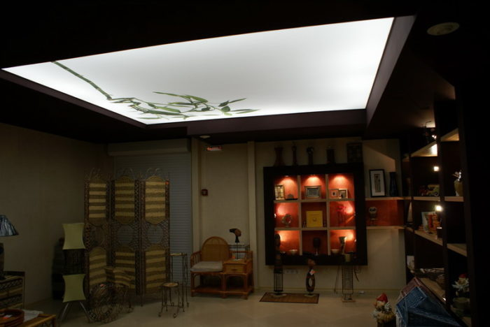 Полупрозрачные натяжные потолки