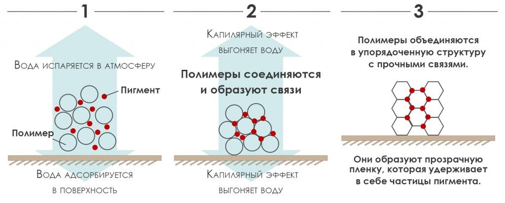 Схема высыхания акриловых красок