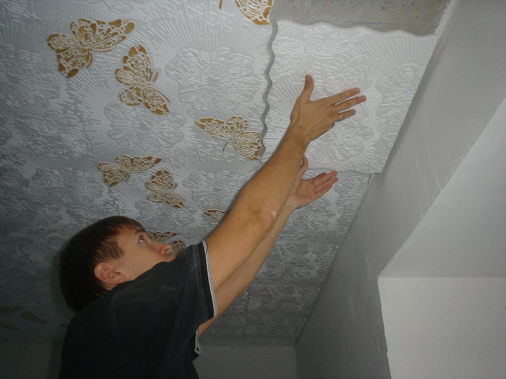 Виды потолок своими руками 727
